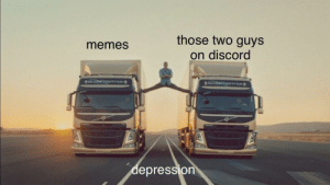Memes, Irl, and Me IRL: those two guys  on discord  memes  lepression me irl