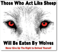 Memes, Quite, and Wolves: Those Who Act Like Sheep  Will Be Eaten By Wolves  Never Give Up The Right to Defend Yourself Get your pacifier out of your mouth, your safety pin off your shirt, get a job and start earning your way in life. Quit whining. You might just make it.