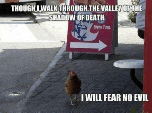 Meme, Reddit, and Death: THOUGHLWALKTHROUGH THE VALLEY OF THE  SHADOW OF DEATH  Every Time.  I WILL FEAR NO EVIL A meme of fear