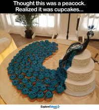 Beautiful, Memes, and Cupcakes: Thought this was a peacock.  Realized it was cupcakes.  Talent  Explore This is almost too beautiful to eat! 😍
