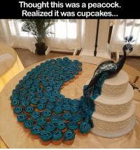 Beautiful, Memes, and Cupcakes: Thought this was a peacock.  Realized it was cupcakes. This is almost too beautiful to eat! 😍
