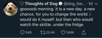 new day: Thoughts of Dog @dog fee... 1d  gooooob morning. it is a new day. a new  chance. for you to change the world. i  would do it myself. but then who would  watch the skittle. under the fridge  549 tJ23.4K 146K