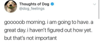 "Good, How, and Got: Thoughts of Dog  @dog feelings  gooooob morning. i am going to have. a  great day.i haven't figured out how yet.  but that's not important <p>This tweet got me through the day. Good night, all. via /r/wholesomememes <a href=""https://ift.tt/2K4Uvze"">https://ift.tt/2K4Uvze</a></p>"