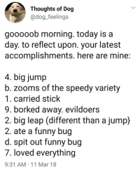 Borked: Thoughts of Dog  @dog_feelings  gooooob morning. today is a  day. to reflect upon. your latest  accomplishments. here are mine  4. big jump  b. zooms of the speedy variety  1. carried stick  9. borked away. evildoers  2. big leap (different than a jump)  2. ate a funny bug  d. spit out funny bug  7. loved everything  9:31 AM 11 Mar 18