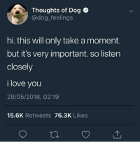 """Love, I Love You, and Dog: Thoughts of Dog  @dog_feelings  hi. this will only take a moment.  but it's very important. so lister  closely  i love you  28/05/2018, 02:19  15.6K Retweets 76.3K Likes <p>Very important message via /r/wholesomememes <a href=""""https://ift.tt/2LBUjFx"""">https://ift.tt/2LBUjFx</a></p>"""