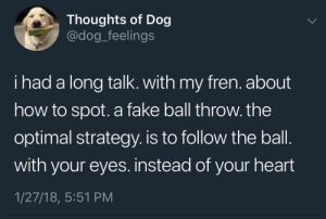THOUGHTS OF DOG... I Had A Long Talk. With My Fren... #dogsfunnytumblr: Thoughts of Dog  @dog_feelings  i had a long talk. with my fren. about  how to spot. a fake ball throw. the  optimal strategy. is to follow the ball  with your eyes. instead of your heart  1/27/18, 5:51 PM THOUGHTS OF DOG... I Had A Long Talk. With My Fren... #dogsfunnytumblr