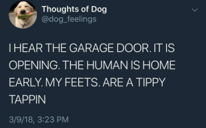 Dogs, Home, and Dog: Thoughts of Dog  @dog_feelings  I HEAR THE GARAGE DOOR. IT IS  OPENING. THE HUMAN IS HOME  EARLY. MY FEETS. ARE A TIPPY  TAPPIN  3/9/18, 3:23 PM We don't deserve dogs