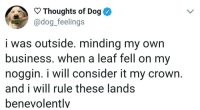 Twitter, Business, and Dog: Thoughts of Dog  @dog._feelings  i was outside. minding my own  business. when a leaf fell on my  noggin. i will consider it my crown.  and i will rule these lands  benevolently When you need cheering up, this is the Twitter for you
