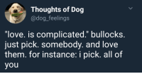 "Love, Http, and Dog: Thoughts of Dog  @dog_feelings  ""love. is complicated."" bullocks.  just pick. somebody. and love  them. for instance: i pick. all of  you <p>W H O L E S O M E B O Y E via /r/wholesomememes <a href=""http://ift.tt/2s780WZ"">http://ift.tt/2s780WZ</a></p>"