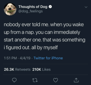Another One, Iphone, and Twitter: Thoughts of Dog  @dog_feelings  nobody ever told me. when you wake  up from a nap. you can immediately  start another one. that was something  i figured out. all by myself  1:51 PM 4/4/19 Twitter for iPhone  26.3K Retweets 210K Likes Just woke up from a nap, I needed this