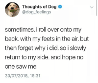 Memes, Saw, and Relatable: Thoughts of Dog  @dog_feelings  sometimes. i roll over onto my  back. with my feets in the air. but  then forget why i did. so i slowly  return to my side. and hope no  one saw me  30/07/2018, 16:31 relatable