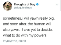 Memes, Soon..., and Text: Thoughts of Dog  @dog_feelings  sometimes. i will yawn really big  and soon after. the human will  also yawn. i have yet to decide.  what to do with my powers  20/07/2018, 00:33 Late-night dump of Memes, Tweets,  other text with pics, for your perusal