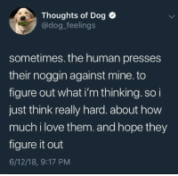 """Love, Figure It Out, and Hope: Thoughts of Dog  @dog_feelings  sometimes. the human presses  their noggin against mine. to  figure out what i'm thinking. so i  just think really hard. about how  much i love them.and hope they  figure it out  6/12/18, 9:17 PM <p>Dog feelings via /r/wholesomememes <a href=""""https://ift.tt/2JDrDup"""">https://ift.tt/2JDrDup</a></p>"""