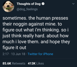 Wholesome tweet: Thoughts of Dog  @dog_feelings  sometimes. the human presses  their noggin against mine. to  figure out what i'm thinking. soi  just think really hard. about how  much i love them. and hope they  figure it out  2:17 13 Jun 18 Twitter for iPhone  85.6K Retweets 413K Likes Wholesome tweet