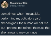 Shenanigans, Dog, and Human: Thoughts of Dog  @dog_feelings  sometimes. when i'm outside.  performing my obligatory yard  shenanigans. the human will call me.  but i pretend not to hear them. so the  shenanigans. may continue