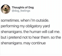 Dogs, Funny, and Shenanigans: Thoughts of Dog  @dog_feelings  sometimes. when i'm outside.  performing my obligatory yard  shenanigans. the human will call me.  but i pretend not to hear them. so the  shenanigans. may continue Dogs own the human. Don't get it twisted. (@dog_feelings)