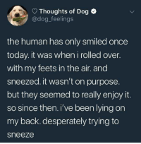 we dont deserve dogs: Thoughts of Dog  @dog_feelings  the human has only smiled once  today. it was when i rolled over.  with my feets in the air. and  sneezed. it wasn't on purpose  but they seemed to really enjoy it.  so since then. i've been lying on  my back. desperately trying to  sneeze we dont deserve dogs