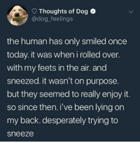 Today, Lying, and Back: Thoughts of Dog  @dog_feelings  the human has only smiled once  today. it was when i rolled over.  with my feets in the air. and  sneezed. it wasn't on purpose  but they seemed to really enjoy it.  so since then. i've been lying on  my back. desperately trying to  sneeze