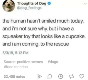 Dogs, Food, and Memes: Thoughts of Dog  @dog feelings  the human hasn't smiled much today.  and i'm not sure why. but i havea  squeaker toy that looks like a cupcake.  and i am coming. to the rescue  5/3/18, 5:12 PM  Source: positive-memes #dogs  #food mention  32,458 notes>O To the rescue!