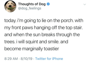 wholesome way to spend the day via /r/wholesomememes https://ift.tt/2TnEvdC: Thoughts of Dog  @dog_feelings  today. i'm going to lie on the porch. with  my front paws hanging off the top stair.  and when the sun breaks through the  trees. i will squint and smile. and  become marginally toastier  8:29 AM 8/10/19 Twitter for iPhone wholesome way to spend the day via /r/wholesomememes https://ift.tt/2TnEvdC
