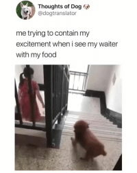 Dank, Food, and Memes: Thoughts of Dog  @dogtranslator  me trying to contain my  excitement when i see my waiter  with my food Yes. Yes. Yes. Yes. Yes. YESSSSS!!!  (contact us at partner@memes.com for credit/removal)