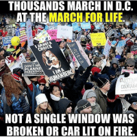 Memes, 🤖, and Window: THOUSANDS MARCHIN DC  AT THE MARCH FOR LIFE.  DEFUN  WE  DON'T NE  IAMA  wwwSTUDENTSFORLIF  COU  NOT A SINGLE WINDOW WAS  BROKEN OR CAR LIT ON FIRE This is how it's done! 🇺🇸 Trumplicans PresidentTrump POTUS45 MakeAmericaGreatAgain TrumpTrain AmericaFirst