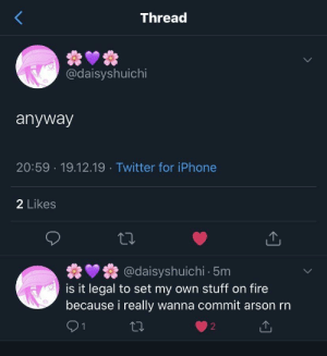 me_irl: Thread  @daisyshuichi  anyway  20:59 · 19.12.19 · Twitter for iPhone  2 Likes  @daisyshuichi 5m  is it legal to set my own stuff on fire  because i really wanna commit arson rn  27 me_irl