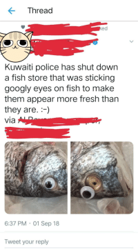 Fresh, Police, and Tumblr: Thread  ed  Kuwaiti police has shut down  a fish store that was sticking  googly eyes on fish to make  them appear more fresh than  they are.)  via  6:37 PM 01 Sep 18  Tweet your reply memehumor:  *Eyes rolling*