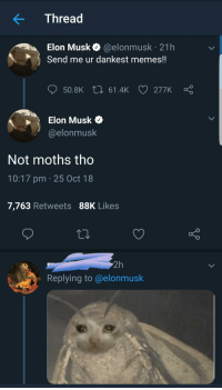 wonderytho:  meirl: Thread  Elon Musk @elonmusk 21h  Send me ur dankest memes!!  ס50.BK 61.4k 277K Ç  Elon Musk  @elonmusk  Not moths tho  10:17 pm 25 Oct 18  7,763 Retweets 88K Likes  2h  Replying to@elonmusk wonderytho:  meirl