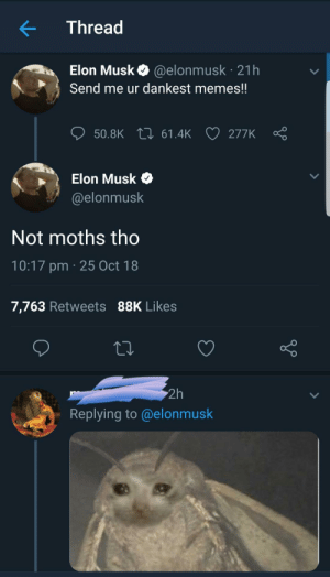 meirl by ElliottRF_ MORE MEMES: Thread  Elon Musk @elonmusk 21h  Send me ur dankest memes!!  ס50.BK 61.4k 277K Ç  Elon Musk  @elonmusk  Not moths tho  10:17 pm 25 Oct 18  7,763 Retweets 88K Likes  2h  Replying to@elonmusk meirl by ElliottRF_ MORE MEMES