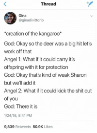 Lets Work: Thread  Gina  @ginadivittorio  *creation of the kangaroo*  God: Okay so the deer was a big hit let's  work off that  Angel 1: What if it could carry it's  offspring with it for protection  God: Okay that's kind of weak Sharon  but we'll add it  Angel 2: What if it could kick the shit out  of you  God: There it is  1/24/18, 8:41 PM  9,839 Retweets 50.9K Likes