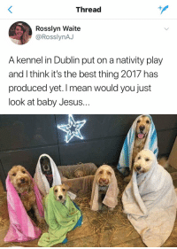 THIS IS GREAT https://t.co/YRk9sn5Bpf: Thread  Rosslyn Waite  @RosslynAJ  A kennel in Dublin put on a nativity play  and I think it's the best thing 2017 has  produced yet. I mean would you just  look at baby Jesus.. THIS IS GREAT https://t.co/YRk9sn5Bpf