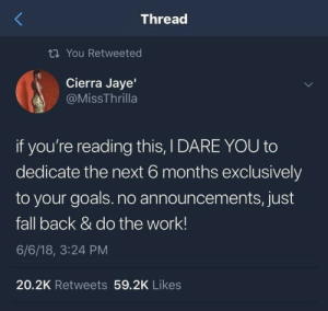 i dare you: Thread  ti You Retweeted  Cierra Jaye'  @MissThrilla  if you're reading this, I DARE YOU to  dedicate the next 6 months exclusively  to your goals.no announcements, just  fall back & do the work!  6/6/18, 3:24 PM  20.2K Retweets 59.2K Likes