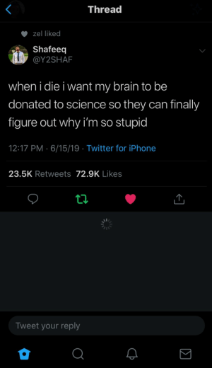 : Thread  zel liked  Shafeeq  @Y2SHAF  when i die i want my brain to be  donated to science so they can finally  O  figure out why i'm so stupid  12:17 PM 6/15/19 Twitter for iPhone  23.5K Retweets 72.9K Likes  Tweet your reply