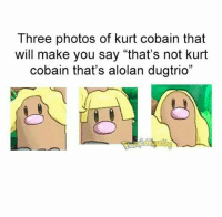 "-normin: Three photos of kurt cobain that  will make you say ""that's not kurt  cobain that's alolan dugtrio"" -normin"