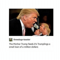 LMAO: threedogs-toaster  The Mother Trump feeds it's Trumplings a  small loan of a million dollars LMAO