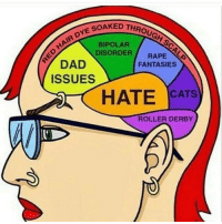Cats, Dad, and Memes: THROUGH SC  HAIR DYE SOAK  DAD  ISSUES  BIPOLAR  DISORDER RAPE  FANTASIES  HATE CATS  ROLLER DERBY Way too accurate! 😆