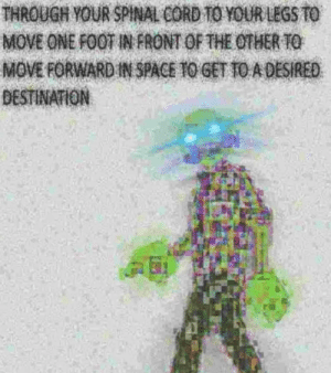 Space, Foot, and One: THROUGH YOUR SPINAL CORD TO YOUR LEGS TO  MOVE ONE FOOT IN FRONT OF THE OTHER TO  MOVE FORWARD IN SPACE TO GET TO A DESIRED  DESTINATION