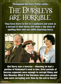 Harry Potter, Memes, and Wolverine: Throughout the Harry Potter series,  THE P  ARE HORRIBLE  They force Harry to live in a cupboard and work as  a servant in their home, and make a big show of  spoiling their own son while depriving Harry.  But Harry was a eaning he had a  portion of Voldemort's soul in him. Brief periods of  horcrux exposure were enough to corrupt Ginny and  Ron Weasley. What if the Dursleys were nice people  who were corrupted over time by the evil in Harry?  CKED  GOM Woah. This headcanon took a dark turn.  --Wolverine