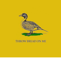 """<p>This is cute and I know I'm being a joke killer and everything but seriously don't Do That. Bread is actually extremely bad for waterfowl! It has no nutritional value for them but it does fill them up and prevent them from eating things that do make them healthy, causing them to get sick and malnourished and sometimes even leading to serious deformities that prevent them from flying and escaping predators, Also, uneaten bread becomes moldy and introduces all kinds of bacteria and nasty stuff. If you want to feed the duckies, feed them things like peas and corn and rice and even dry cat food!</p>  <p>More info: <a href=""""https://blog.education.nationalgeographic.org/2017/03/27/stop-feeding-ducks-bread/"""">https://blog.education.nationalgeographic.org/2017/03/27/stop-feeding-ducks-bread/</a></p>: THROW BREAD ON ME <p>This is cute and I know I'm being a joke killer and everything but seriously don't Do That. Bread is actually extremely bad for waterfowl! It has no nutritional value for them but it does fill them up and prevent them from eating things that do make them healthy, causing them to get sick and malnourished and sometimes even leading to serious deformities that prevent them from flying and escaping predators, Also, uneaten bread becomes moldy and introduces all kinds of bacteria and nasty stuff. If you want to feed the duckies, feed them things like peas and corn and rice and even dry cat food!</p>  <p>More info: <a href=""""https://blog.education.nationalgeographic.org/2017/03/27/stop-feeding-ducks-bread/"""">https://blog.education.nationalgeographic.org/2017/03/27/stop-feeding-ducks-bread/</a></p>"""