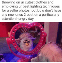 Me. Only posting bc of the cute furby: throwing on ur cutest clothes and  employing ur best lighting techniques  for a self ie photoshoot bc u don't have  any new ones 2 post on a particularly  attention hungry day Me. Only posting bc of the cute furby