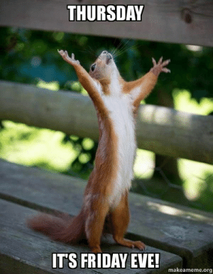 Friday, Funny, and It's Friday: THURSDAY  IT'S FRIDAY EVE!  makeameme.org THURSDAY It's FRIDAY EVE! - Happy Squirrel | Funny