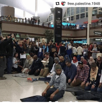 "Asian, Memes, and Agnostic: ti E free palestine 1948  10-15  Ground ""Denver. Today, we prayed namaz at the main terminal of DIA. The police told us that we could not openly pray. Let that sink in for a second - We were not allowed to peacefully pray and that we would be arrested if we did. That didn't stop us. We prayed anyway. As I prayed for the safety of my family, my friends, my community, the millions of refugees, the homeless, the vulnerable, the sick, the world....I felt the protection of all the protestors. Christians, Agnostics, Jews, Whites, Blacks, Hispanics, Asians, Arabs, other Muslims, Atheists, LGBTQ - they all banded together to make sure we could pray in peace. Thank you to each and every single one of you from the deepest part of my soul. May we continue to band together and fight tyranny, inequality, and hate"". 📸 👉🏼 Iqra Hussain"