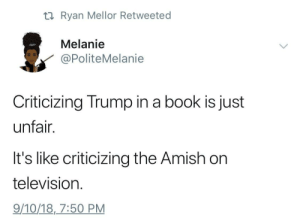 This is it Chief by Mantagray MORE MEMES: ti Ryan Mellor Retweeted  Melanie  PoliteMelanie  Criticizing Trump in a book is just  unfair.  It's like criticizing the Amish on  television  9/10/18,7:50 PM This is it Chief by Mantagray MORE MEMES
