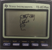 Fail, Windows, and Formation: ti TEXAS INSTRUMENTS TI-83 Plus  STAT PLOT F1  TBLSET F2 FORMAT F3  CALC  F4  TABLE  FS  YE WINDOW ZooM TRACE GRAPH math teacher: alright so I'm letting you guys use your calculators on the test, nobody should fail my calculator: