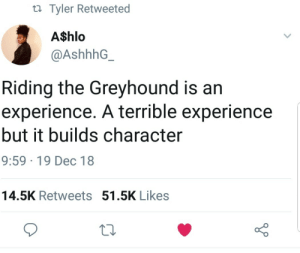 Dank, Memes, and Target: ti Tyler Retweeted  A$hlo  @AshhhG  Riding the Greyhound is an  experience. A terrible experience  but it builds character  9:59 19 Dec 18  14.5K Retweets 51.5K Likes It sure does by Hopefulromantic1999 MORE MEMES