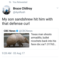 cbc news: ti You Retweeted  Bruce Chillroy  @AyoRush  My son sandshrew hit him with  that defense curl  CBC News Ф @CBCNews  Texas man shoots  armadillo, bullet  ricochets back into his  face cbc.ca/1.31763...  9:28 AM 03 Aug 17