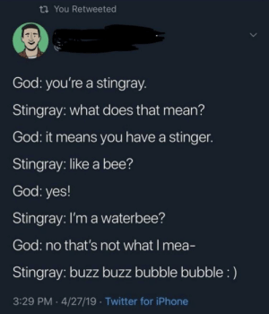God, Iphone, and Twitter: ti You Retweeted  God: you're a stingray  Stingray: what does that mean?  God: it means you have a stingen  Stingray: like a bee?  God: yes!  Stingray: l'm a waterbee?  God: no that's not what I mea-  Stingray: buzz buzz bubble bubble:)  3:29 PM 4/27/19 Twitter for iPhone buzz buzz bubble bubble :)