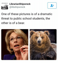 """Just in case you missed that Trump's pick for Sec. of Education actually said guns in schools may be needed due to the threat of """"potential grizzlies."""": tibrarians6ipwreck.  Librarian Shipwreck  Calibshipwreck  One of these pictures is of a dramatic  threat to public school students, the  other is of a bear. Just in case you missed that Trump's pick for Sec. of Education actually said guns in schools may be needed due to the threat of """"potential grizzlies."""""""