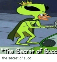 Tie Searet of Succ  the secret of succ